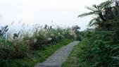 1051118五分山步道:DSC08654.jpg