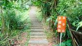 1051118五分山步道:DSC08628.jpg