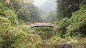 台灣四日遊:DSC09196.jpg