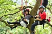 20141130爬樹:D7K_0252.jpg