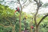 20141130爬樹:D7K_0315.jpg