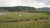 201907蒙古共和國:DSC00180.jpg