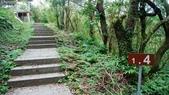 1051118五分山步道:DSC08637.jpg