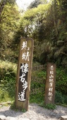 20190409太平山:DSC09494.jpg