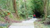 1051118五分山步道:DSC08636.jpg