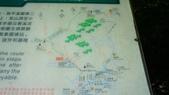 1051118五分山步道:DSC08627.jpg