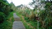 1051118五分山步道:DSC08650.jpg