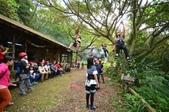 20141130爬樹:D7K_0222.jpg