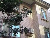 一順磁磚-3室外壁:木化石14x28cm (8).jpg