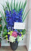 RDWEDDING婚禮佈置館-花藝商品之盆花設計:1436891064.jpg