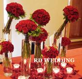 RDWEDDING婚禮佈置館-花藝商品之盆花設計:1436891053.jpg