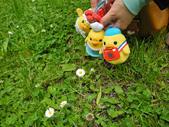 2016.6.4~6.12@北海道(Day8):小雞們:喔喔有小花!