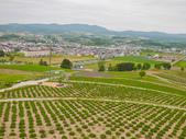 2016.6.4~6.12@北海道(Day5):公園位於制高點,可往下俯瞰富良野市街