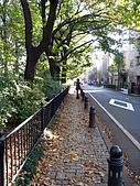 2009.11.19~22@東京自由行(DAY3):我們要走風之散步道到吉卜力美術館~