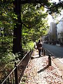 2009.11.19~22@東京自由行(DAY3):我好喜歡這裡的街道還有住宅,非常寧靜。