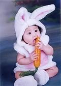 寶貝寫真:兔兔吃紅蘿蔔