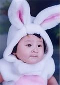 寶貝寫真:兔兔裝