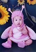 寶貝寫真:蝴蝶裝