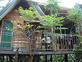 2006-12-15(台南五號樹屋採訪):DSC04849.JPG