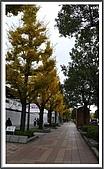 姬路城and大阪梅田:其實實際上看起來很美的~但拍不出來