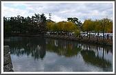 姬路城and大阪梅田:橋旁邊的湖~那個樹應該是垂楊吧!