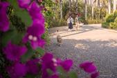 美術館生態小散步:2018 ♡ PHOTO | ShanDraw 美術館小散步0311-05