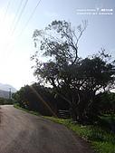 2010-06-09滿州:DSC09718.jpg