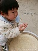 2011-02-23 農園樂:DSC09216.jpg