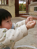 2011-02-23 農園樂:DSC09217.jpg