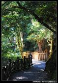20091027 桃園-拉拉山:DSC_2672.jpg