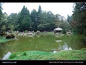 20080329-30 阿里山賞櫻:DSC_4409.jpg