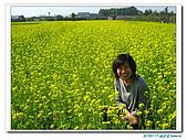 20100117 油菜花田:IMG_9390.JPG