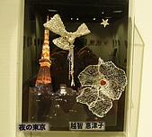 銀的架橋 - 2008日本沖繩:作品8