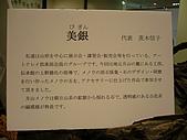銀的架橋 - 2008日本沖繩:美銀的宣言
