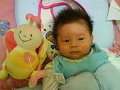 洋洋哥_0歲2~3個月:DSC00440.JPG