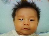 洋洋哥_0歲2~3個月:DSC00453.JPG