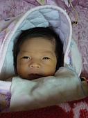 洋洋哥_0歲1個月:P1000017.JPG