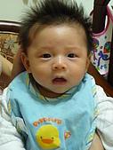 洋洋哥_0歲2~3個月:P1000105.JPG