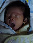 洋洋哥_0歲1個月:P1000028.JPG