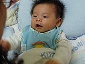 洋洋哥_0歲2~3個月:P1000118.JPG
