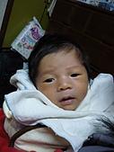洋洋哥_0歲1個月:P1000033.JPG