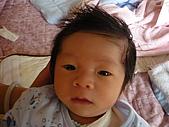 洋洋哥_0歲1個月:P1000042.JPG