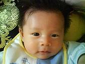 洋洋哥_0歲4~5個月:DSC00463.JPG