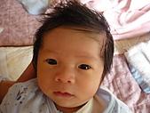 洋洋哥_0歲1個月:P1000043.JPG
