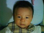 洋洋哥_0歲4~5個月:DSC00468.JPG