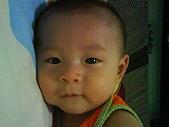 洋洋哥_0歲6~7個月:DSC00538.JPG