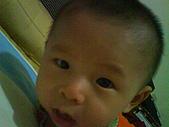 洋洋哥_0歲6~7個月:DSC00539.JPG