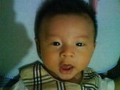 洋洋哥_0歲4~5個月:DSC00469.JPG