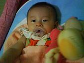 洋洋哥_0歲6~7個月:DSC00546.JPG