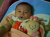 洋洋哥_0歲6~7個月:DSC00547.JPG